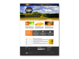 Medokomer - návrh webu